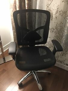 Mesh Chair with adjustable Lumbar Support