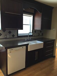 PRICE REDUCED!!!! Solid wood kitchen cabinets