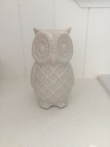 Decorative Owl Manly Brisbane South East Preview