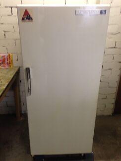 Wedtinghouse fridge