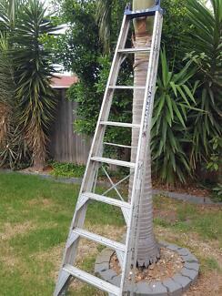 Ladder Bailey