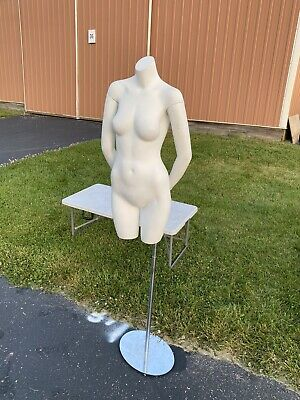 Womens Petite Torso Mannequin Wstand And Arms