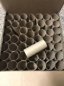 50 Empty Toilet Paper Rolls Tubes Arts Crafts School Spring Easter Projects USA