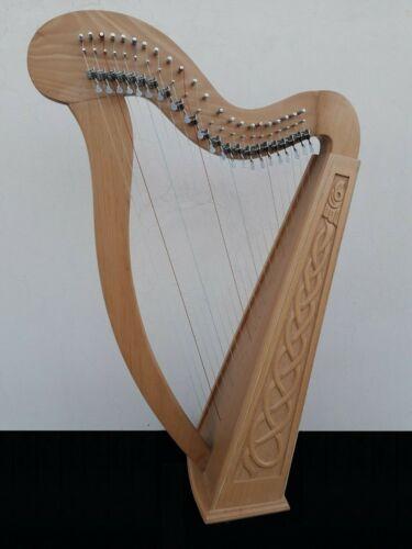 Geoffrey | Ragga 22 Strings Ashwood Irish Harp levers H8L | Spare strings, Key