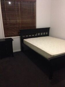 Room $150pw utilities included St Agnes Tea Tree Gully Area Preview