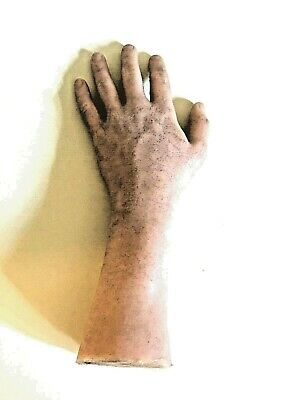 Halloween prop LIFESIZE SILICONE HAND/ARM PROP. Appears to be 100% silicone.