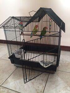 Bird cage and 2 bird