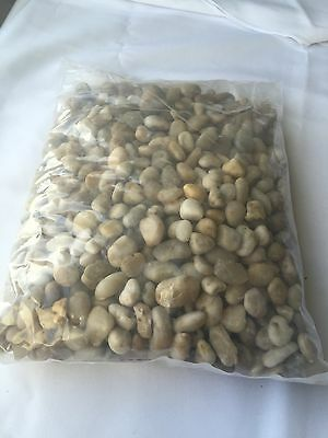 Decorative Pebbles River Rocks 10 Lb. Nature ...