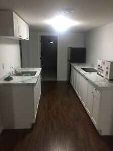 2 Bedroom Basement Apartment close to St Lawerence