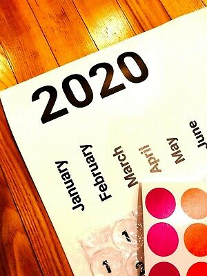 2020 Bubble Wrap Poster Sized Wall Calendar with a Bubble to Pop Everyday
