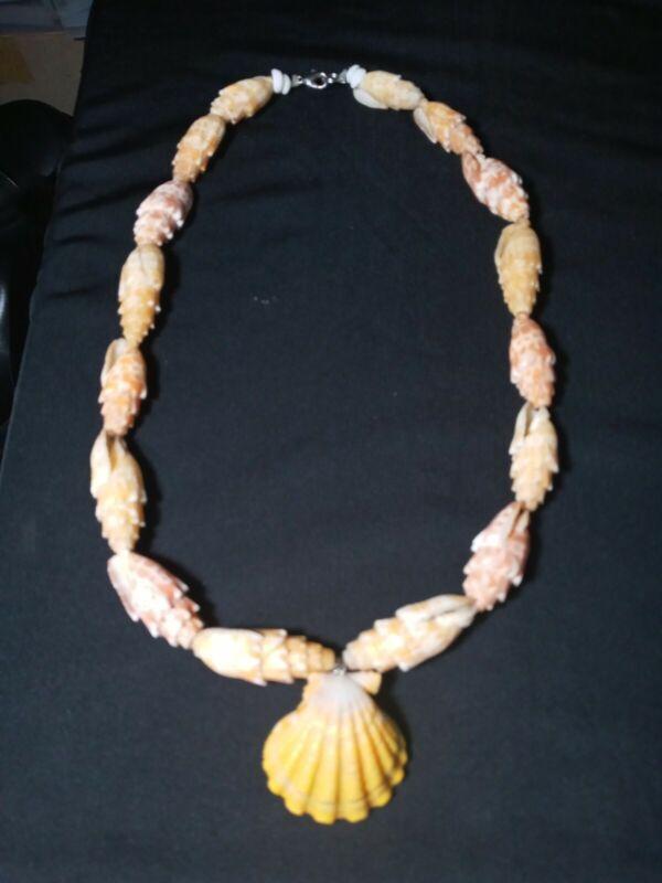 Rare Hawaiian 20 Inch  Mitra Shell & sunrise shell Necklace