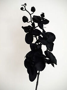 Artificial Silk Flowers Fashion Orchid black with Black Stem