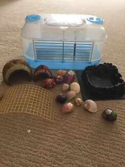 Hermit crab cage (or mouse cage)
