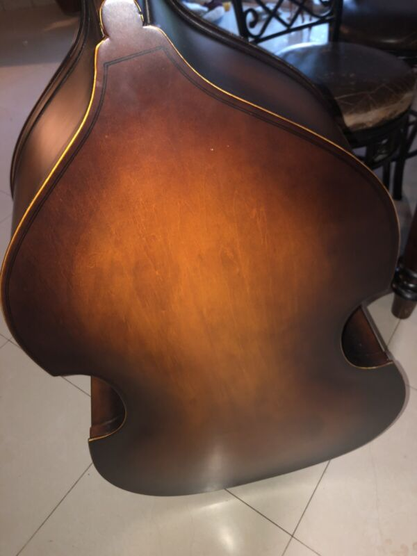 String Double Bass Set