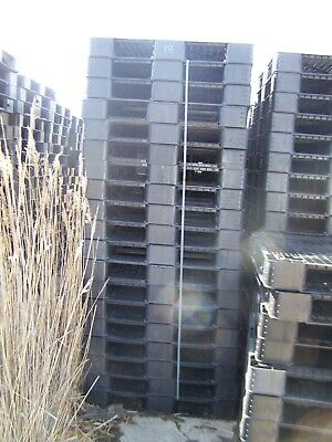 19 Unmarked Unbranded 39x39 Standard Rackable Plastic Pallets