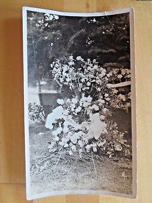 Rare Funeral Photograph Cemetery Flower Arrangement Original Black & White