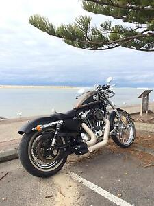 Custom Sportster 72 XL1200V - with stage 3 engine Berkeley Vale Wyong Area Preview