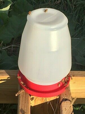 1 One Gallon Plastic Honey Bee Feeder Bee Supplemental Feeder