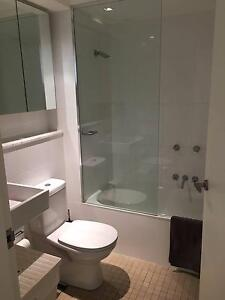 Newly renovated 2 bed Bondi Beach apartment for rent! Bondi Beach Eastern Suburbs Preview