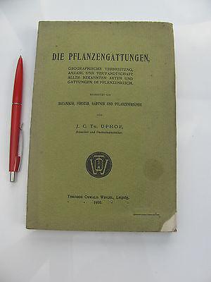 1910 Die Pflanzengattungen geographische Verbreitung Anzahl Verwandschaft Uphof