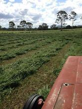 Hay for sale Mutdapilly Ipswich City Preview