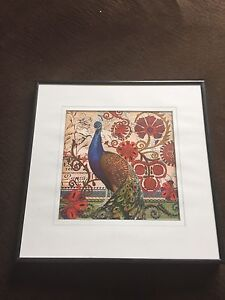 Peacock photo with frame