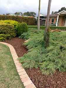Narre Warren Garden Care Narre Warren South Casey Area Preview