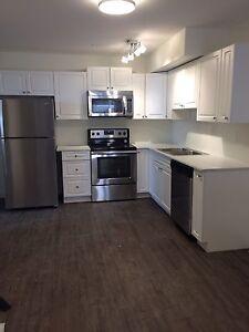 Brand new 2 bedroom suite Juniper west