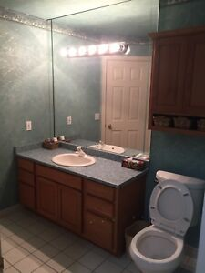South windsor beautiful house for rent