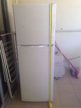 Westinghouse fridge/freezer West Perth Perth City Preview