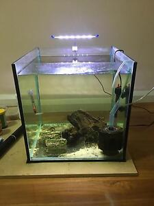 46cm cube tank Landsdale Wanneroo Area Preview