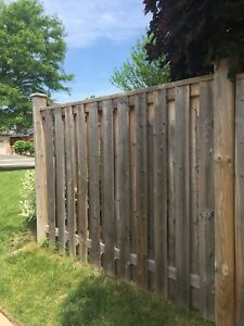 Fence Panels - fantastic condition