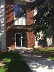 1 bedroom whyte avenue apartment