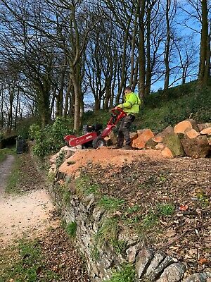 ⭐Tree Stump Grinding And Removal tree felling full hedges large stumps dug out ⭐