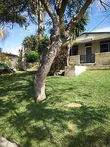 Landscaping Amp Gardening Gumtree Australia Free Local