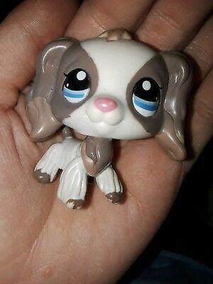 2pcs #2254 #1688 Littlest Pet Shop Cocker Spaniel Kid Toy Rare Grey Dane Dog LPS