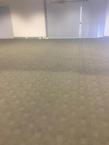 Pest Control & Carpet Cleaning