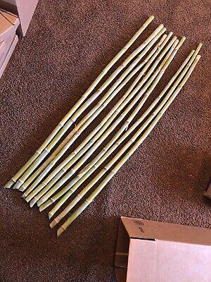 """Natural Bamboo Poles (4 ft. Natural Bamboo Poles Support Rod Long Trellis Building Stick (10 Pack) 1"""" )"""