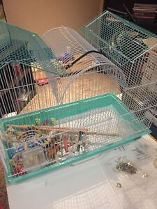 Bird cage w/ toys and food