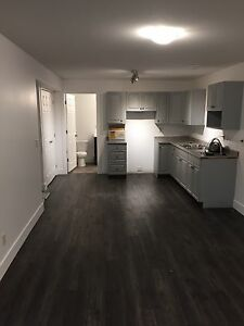Brand new basement suite for rent on Middleton Mountain