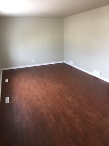 COMPLETELY RENOVATED 2 BEDROOM DUPLEX SUITE FOR RENT!!