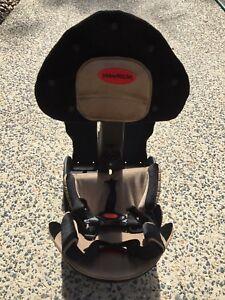 WeeRide Delux-child bike carrier