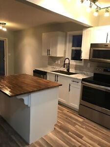 Duplex for sale by owner in The South Hamptons Edmonton Alberta