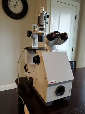Zeiss Inverted Microscope 47 17 01 Max Erb  9901