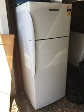 Fisher and Paykel fridge Devonport Devonport Area Preview