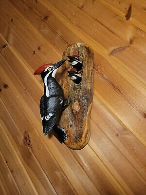 Pileated Woodpecker Family Wood Carving Vintage Duck Decoy Casey Edwards