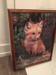 Wooden / Glass Frame - Fox Picture