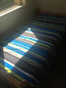 2 x single beds or bunks + bonus mattress Underwood Logan Area Preview