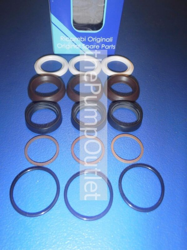 AR 42549 Packing Kit Water Seals *OEM Parts*