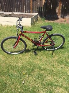 Men's Bicycle for Sale
